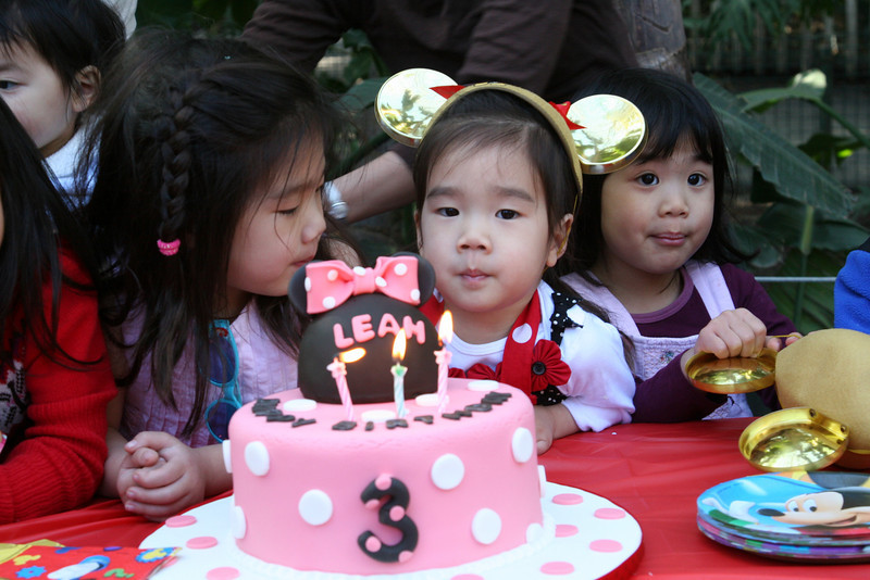 Leah's 3rd Birthday