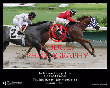 2013 Quarter Horse Season