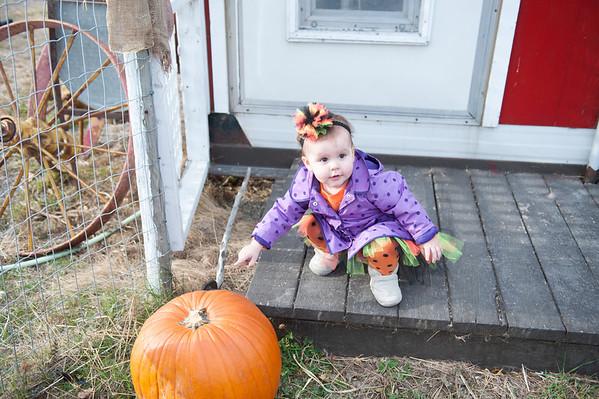 2013 10 18 Pumpkin Hunt Butterfield Acres