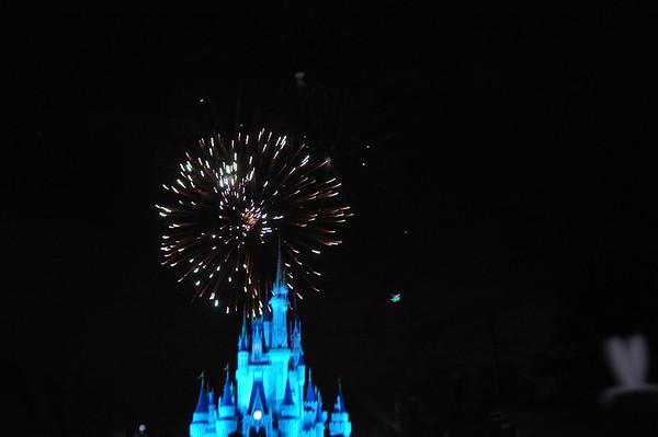 Happy New Year 2011/2012 Magic Kingdom