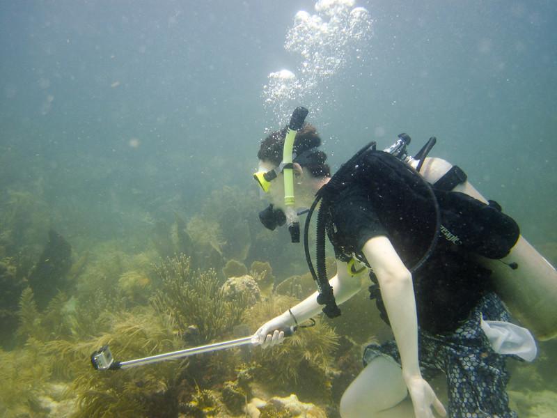 islamorada-diving-9.jpg
