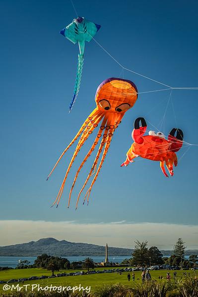 Kites flying over Bastion Point, in celebration of Matariki Auckland New Zealand