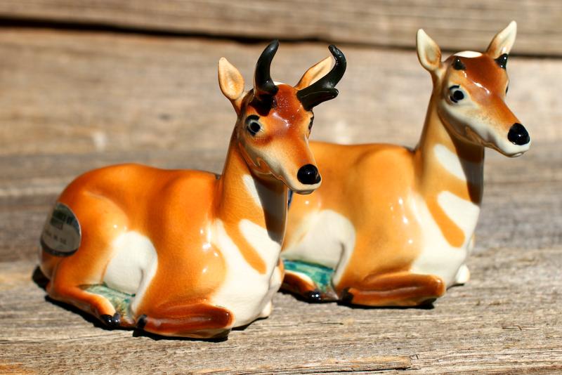 antelope  3634.png