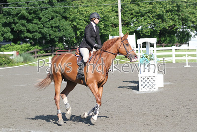 Ring I: Morning Equitation Classes/USEF Talent Search