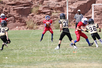 2019 Holbrook Youth Football League