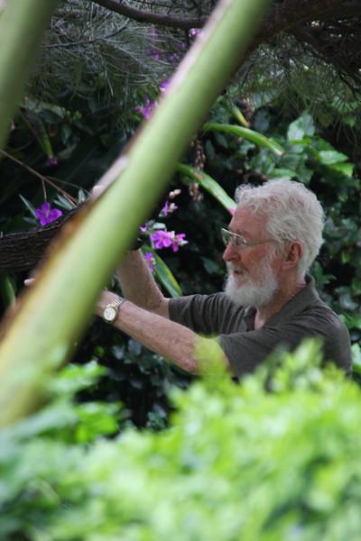 garden (175).jpg