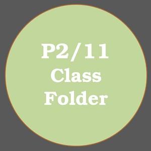P2/11 ACTIVITIES