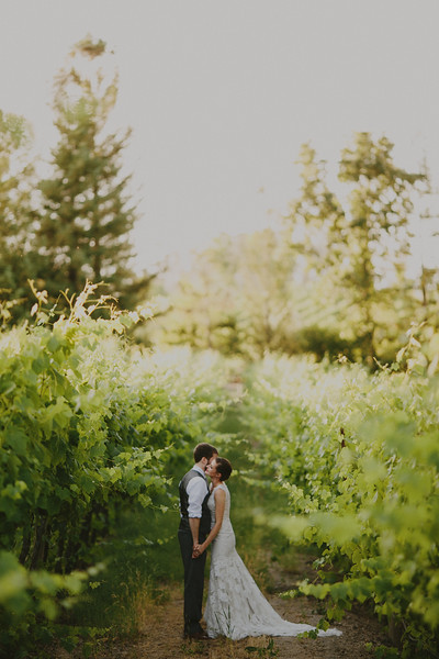 Julia and Pat's Vineyard Wedding-67.JPG