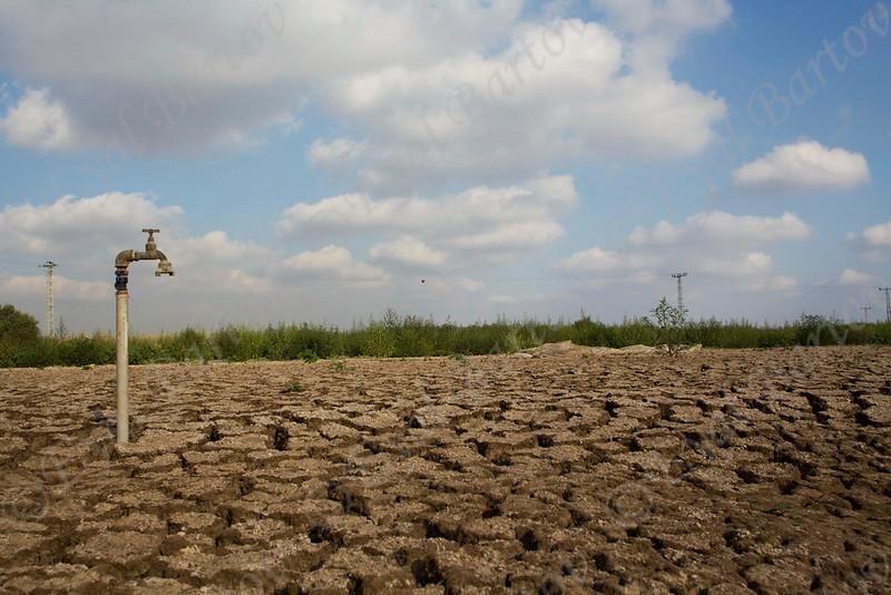 IMG_0360 drought.jpg