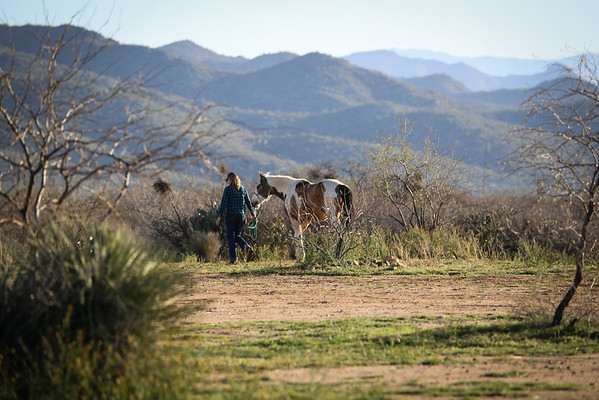 Boyd Ranch 3-16-19