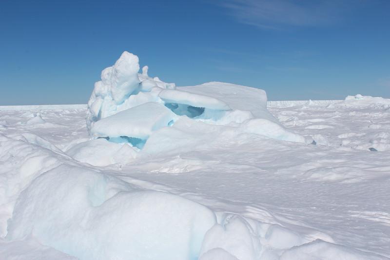 Antarctica 027.JPG