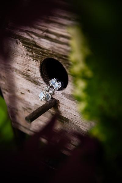 TARYN AND SETH - THE MICRO WEDDING - 11.jpg