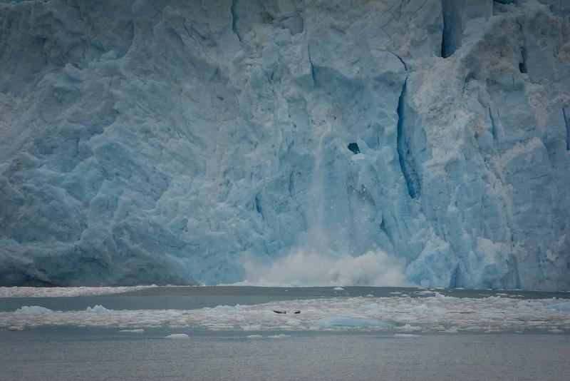Kenai-Fjords-98.jpg