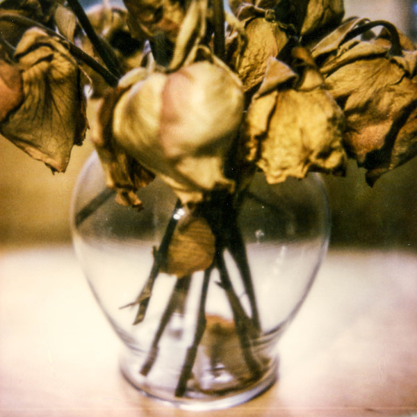 polaroid-glass-flowers007.jpg
