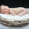 Colin's Newborn Photos_216