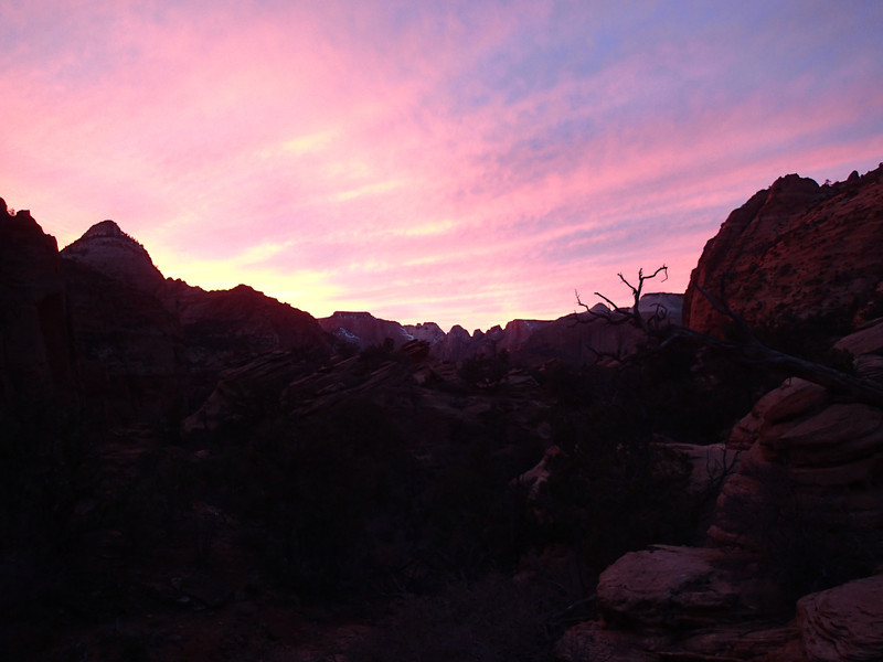 Zion National Park - Ashley 13.JPG