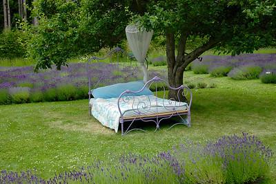 Happy Valley Lavender & Herb Farm