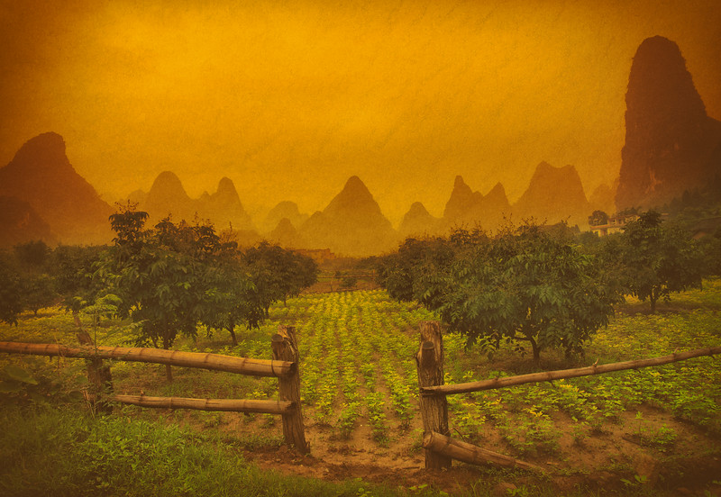 Farming in Deep Southern China