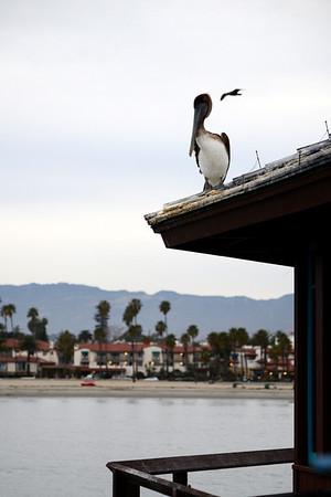 Santa Barbara scenery