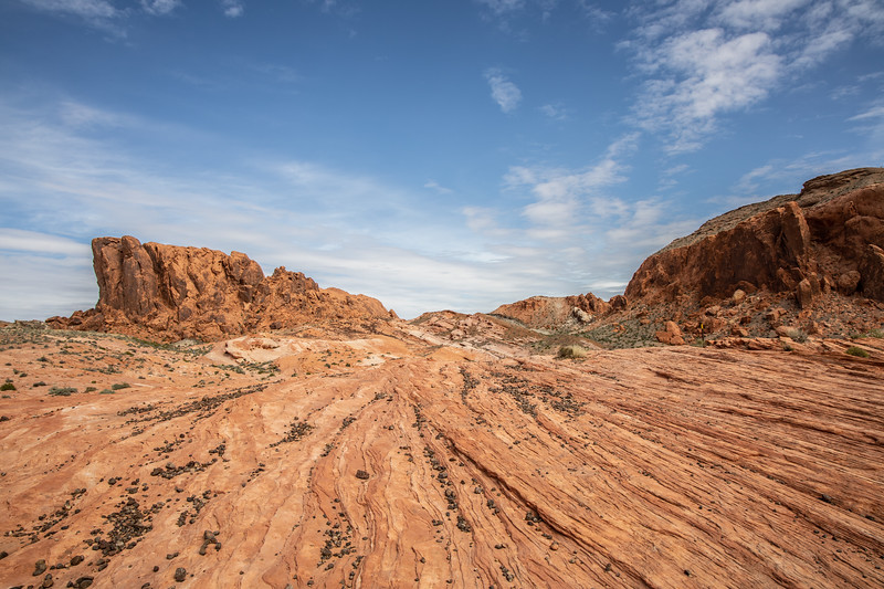 20190405_valley of fire_03-26.jpg