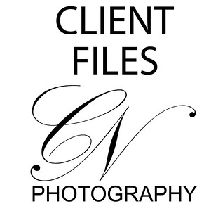 Customer Files