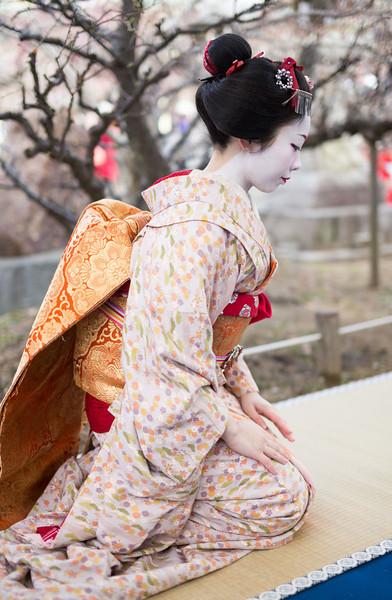 Kitano Tenman-gū Plum Blossom Festival (北野天満宮の梅花祭)