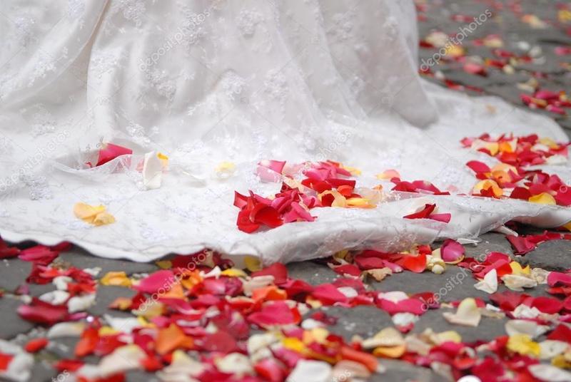 depositphotos_2673435-stock-photo-rose-petals-on-ground.jpg