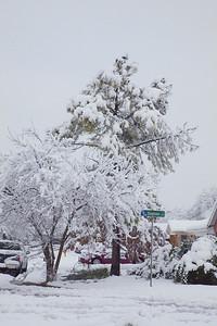 SnowStorm 02-11-0=10