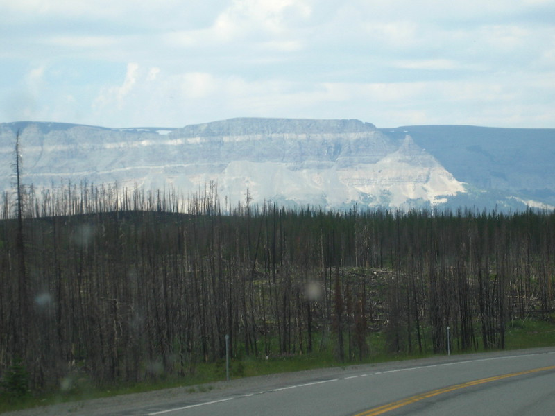 2008-07-24-YOCAMA-Montana_2721.jpg