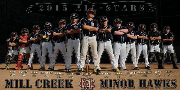 Mill Creek Minor All-Stars 2015