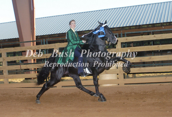 CL11  AMATEUR ADULT PONY