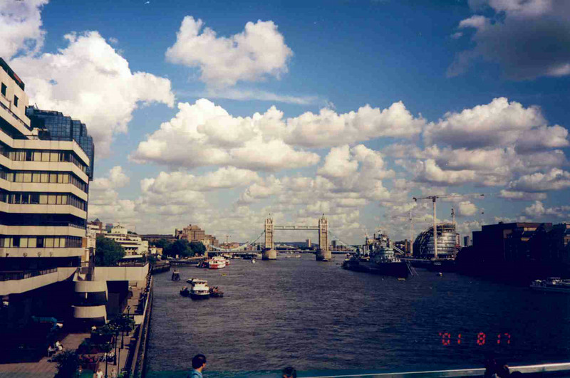 Nice River View.jpg