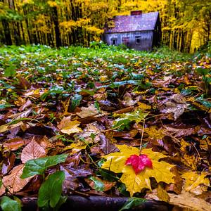 Tourism Quebec: Autumn Colours