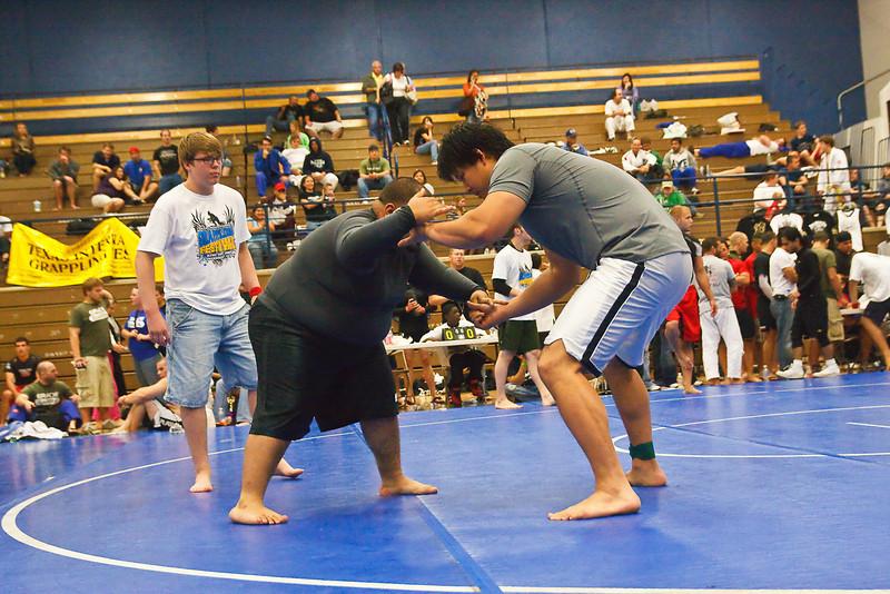 MMA_Houston_20090418_0975.jpg