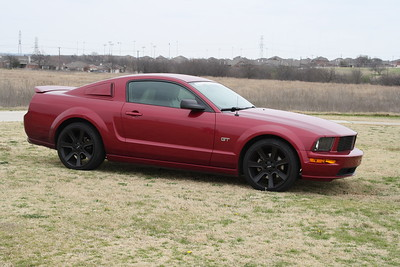 2006 Mustang GT (Dyre Wolf)