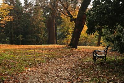 Vácrátót by Fall — Vácrátót ősszel
