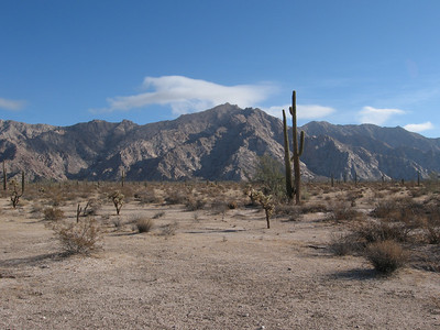 Sierra Pinta Mtns HP - Jan. 9, 2011