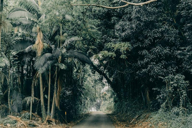 Hawaii20-390.jpg