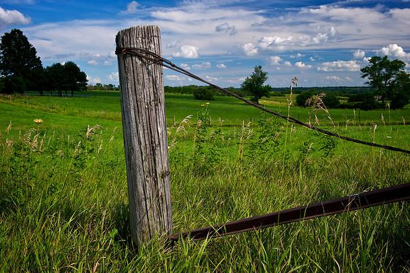 Iowa Fence Posts/Telephone Poles