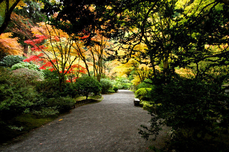 Portland Japanese Garden  11-11-11  3566.jpg
