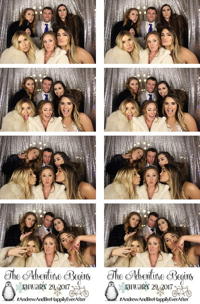 Brianna & Andrew's Wedding 1.29.17 - Photo Strips