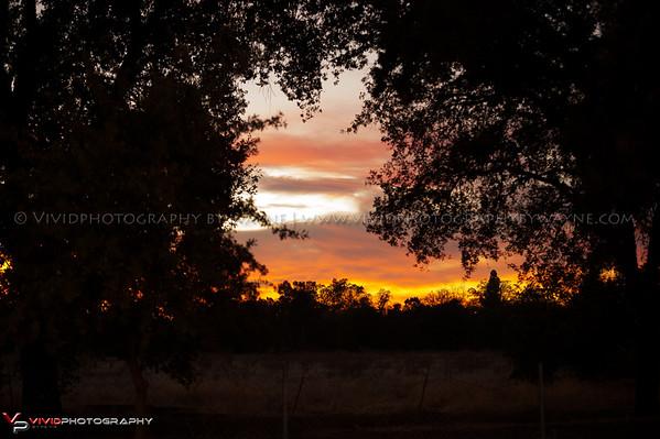 Elkhorn BMX 10-10-2014