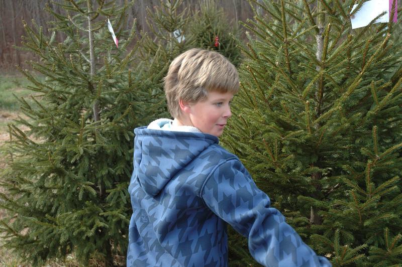 12-06-08 Christmas Tree-011.jpg