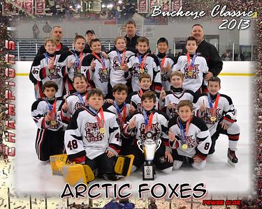 Arctic Foxes Vs Pittsburgh Predators (Championship)