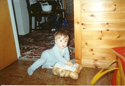 Tain 1993