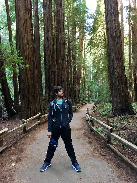 Graham in Muir Woods