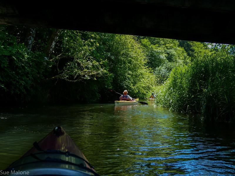 Beaver Creek Kayak (20 of 21).jpg