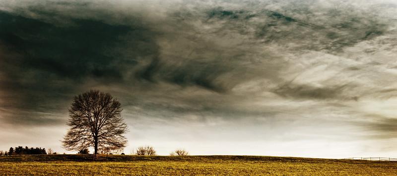Mike Maney_Bucks County_-4.jpg