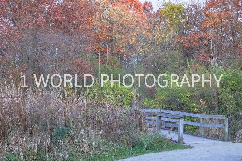Herrick Lake FP Fall '16-6.jpg