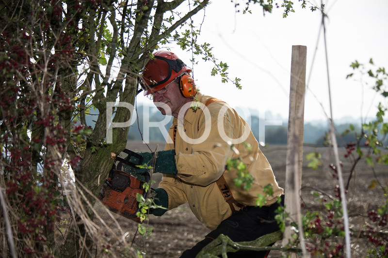 2014 Stone Ploughing Match